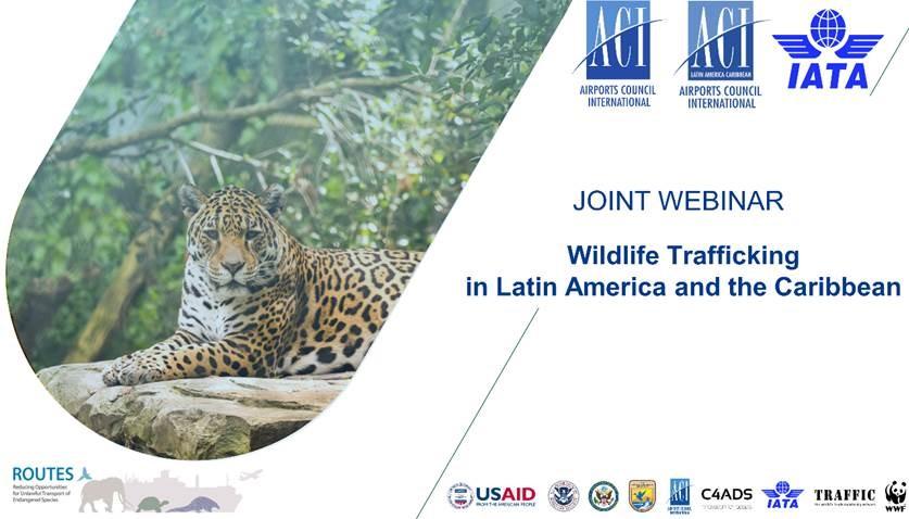 WildlifeTrafficking_Webinar